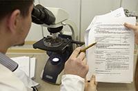 Мужчина, микроскоп, документ
